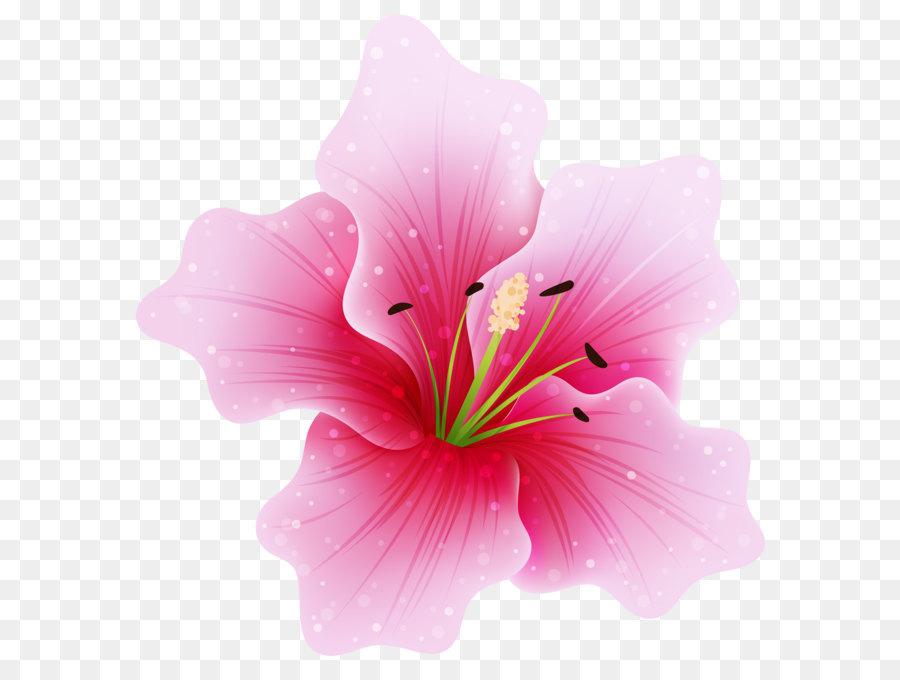 Descarga gratuita de Flor, Rosa Flores, Rosa Imágen de Png
