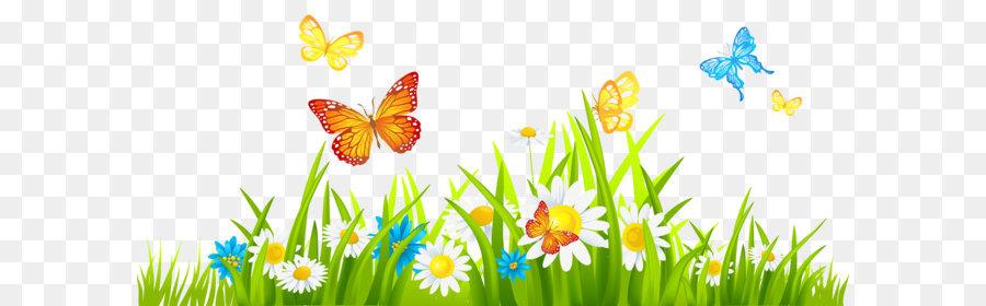 Descarga gratuita de Jardín, Jardinería, Flor Imágen de Png