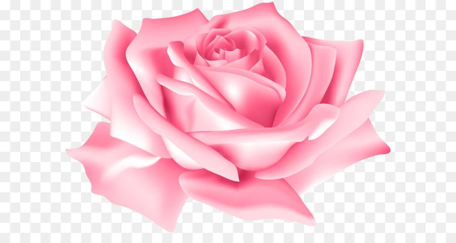 Descarga gratuita de Flor, Azul Rosa, Azul Imágen de Png