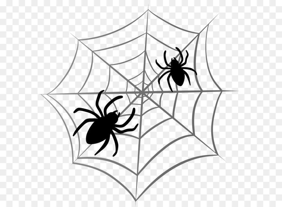 Descarga gratuita de Araña, Descargar imágenes PNG