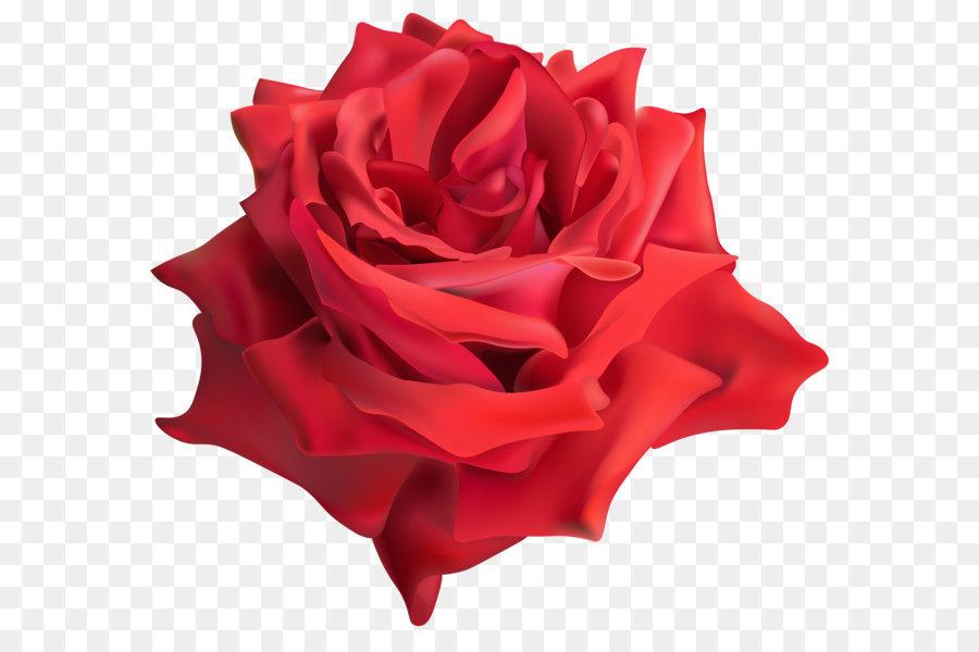 Descarga gratuita de Flor, Rojo, Flores Imágen de Png