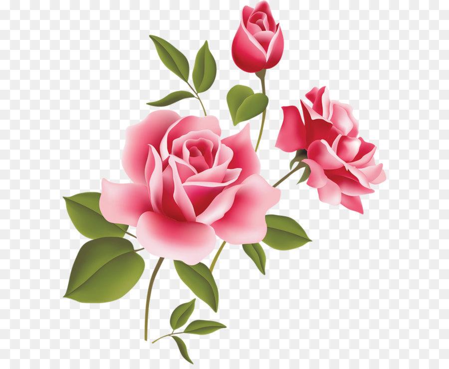 Descarga gratuita de Rosa, Gratis, Blog Imágen de Png