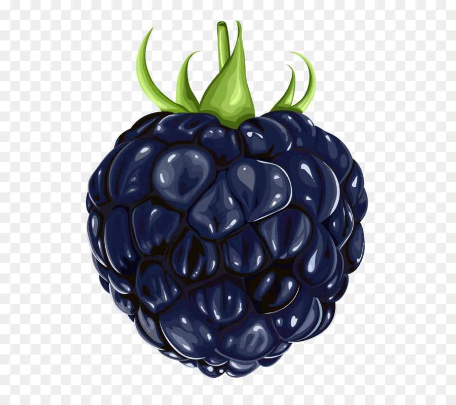 Descarga gratuita de Blackberry, La Fruta, Berry Imágen de Png