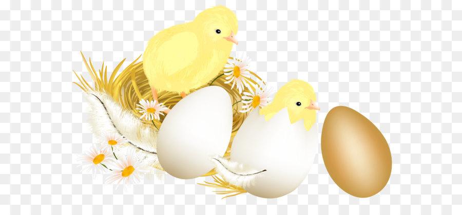 Descarga gratuita de Conejito De Pascua, Pollo, Pascua  imágenes PNG