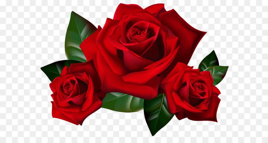 Descarga gratuita de Rosa, Flor, Edición Imágen de Png