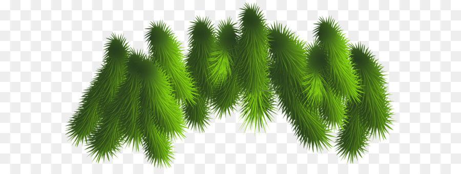 Descarga gratuita de La Navidad, Rama, árbol Imágen de Png
