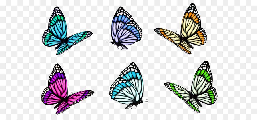 Descarga gratuita de Mariposa, A Todo Colordecorativomariposailustraciones, Los Insectos imágenes PNG