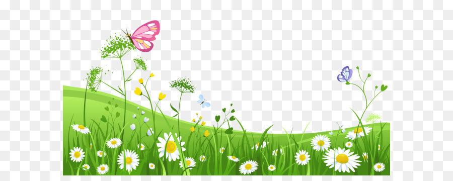 Descarga gratuita de Flor, Descargar, La Fotografía imágenes PNG