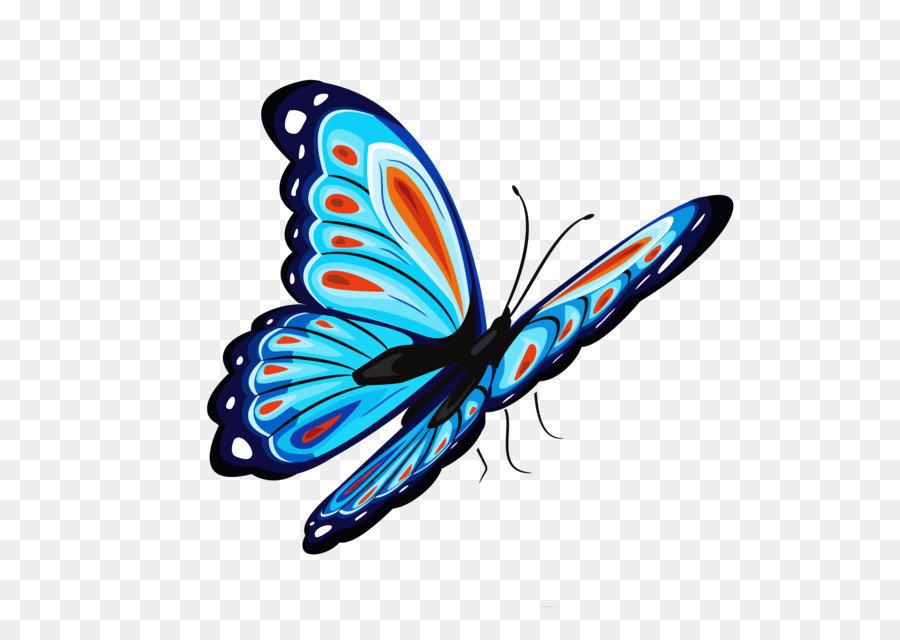 Descarga gratuita de Mariposa, Símbolo, Color imágenes PNG