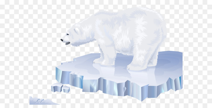 Descarga gratuita de Oso, ártico, Los Osos Polares Imágen de Png