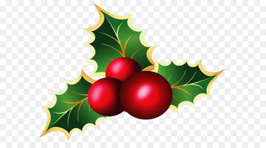 Descarga gratuita de Común Holly, El Muérdago, La Navidad Imágen de Png