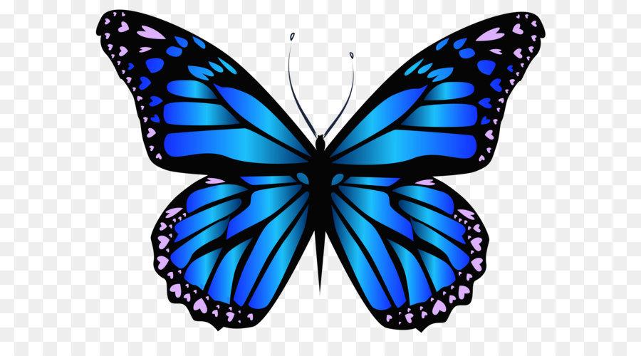 Descarga gratuita de Mariposa, Violeta, Azul imágenes PNG