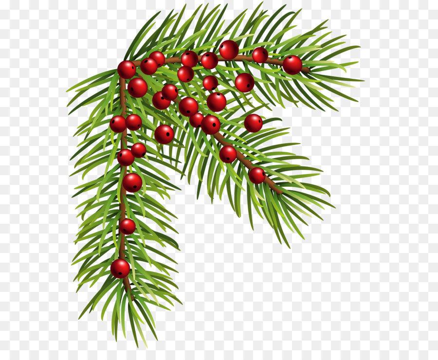 Descarga gratuita de La Navidad, Pino, Abeto Imágen de Png