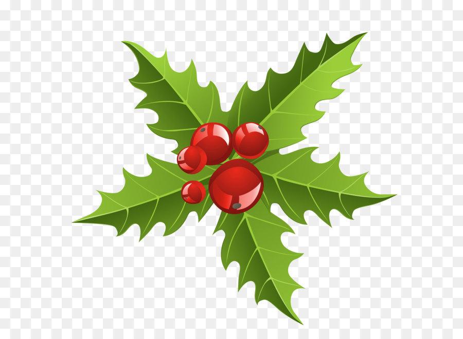Descarga gratuita de Santa Claus, La Navidad, El Muérdago imágenes PNG