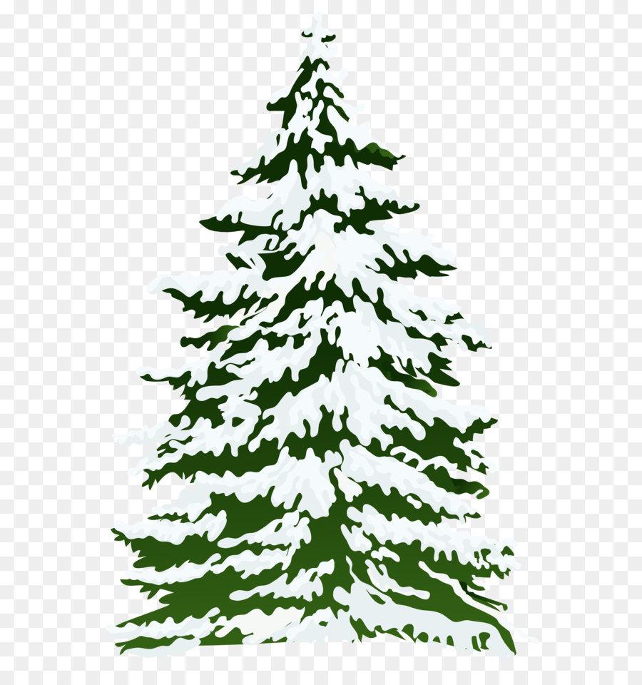 Descarga gratuita de Abeto, árbol, Invierno Imágen de Png