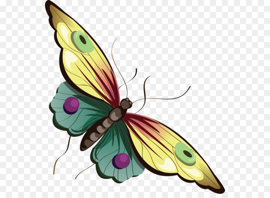 Descarga gratuita de Mariposa, Papillon Perro, Blog imágenes PNG