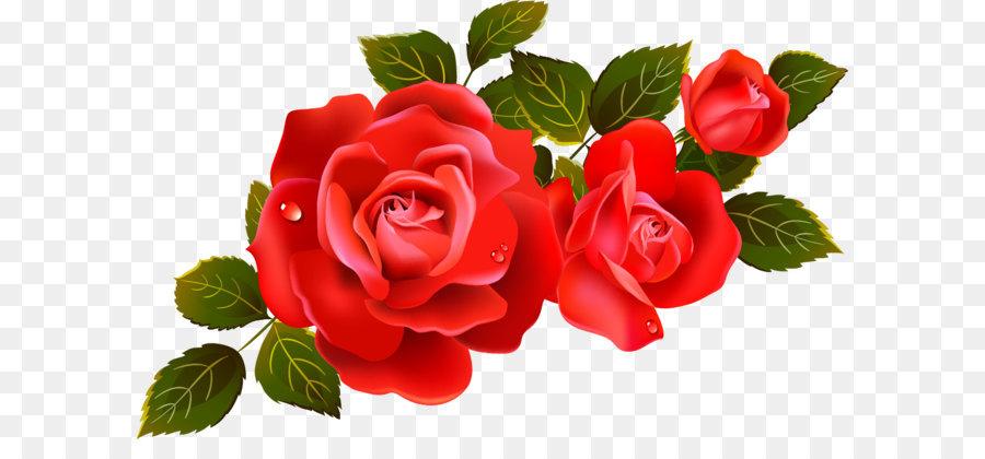 Descarga gratuita de Rosa, Blog, Miniatura Imágen de Png