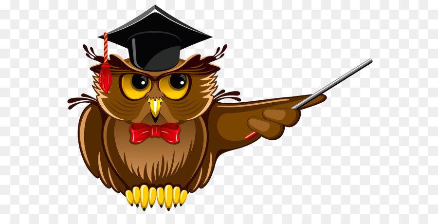 Descarga gratuita de Maestro, Estudiante, La Educación imágenes PNG