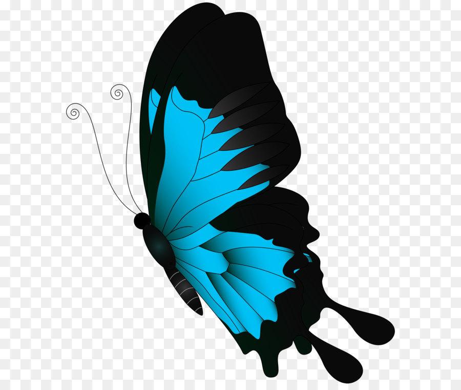 Descarga gratuita de Mariposa, Chroma Key, Los Insectos Imágen de Png