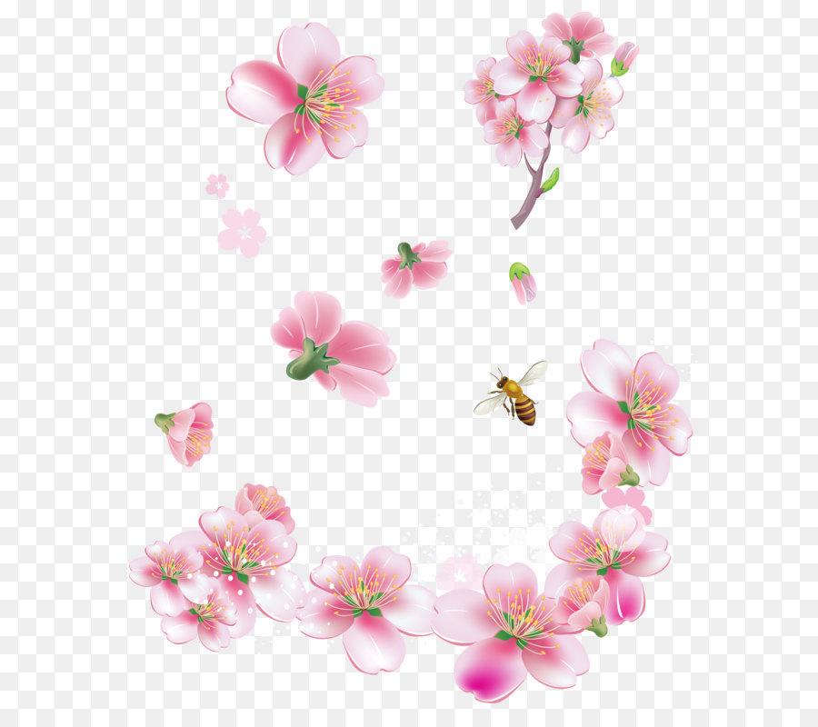Descarga gratuita de Flor, Rosa Flores, La Primavera Imágen de Png