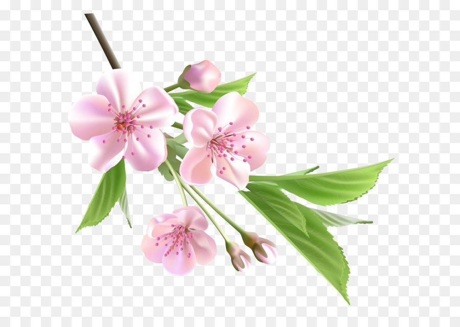 Descarga gratuita de Flor, Rama, Floral Diseño Imágen de Png