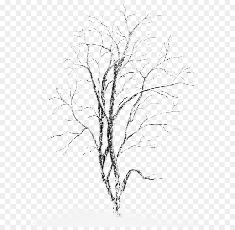 Descarga gratuita de árbol, La Nieve, Invierno imágenes PNG