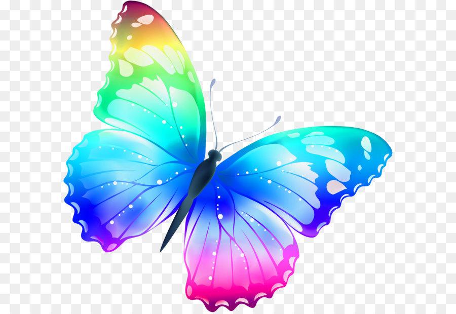 Descarga gratuita de Mariposa, Color, Polinizador imágenes PNG