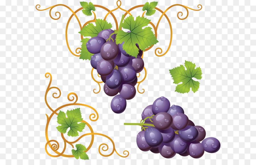 Descarga gratuita de Vino, Uva, Vid Imágen de Png