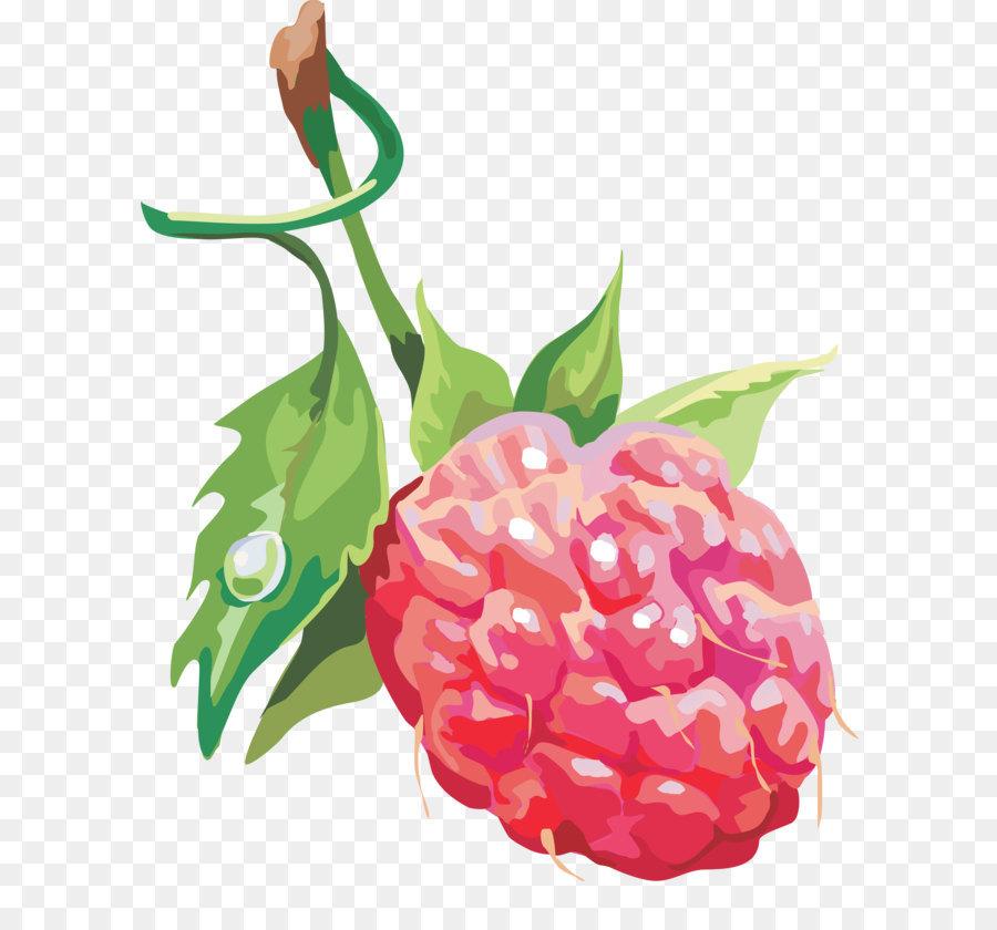 Descarga gratuita de Frambuesa, Descargar, Berry imágenes PNG