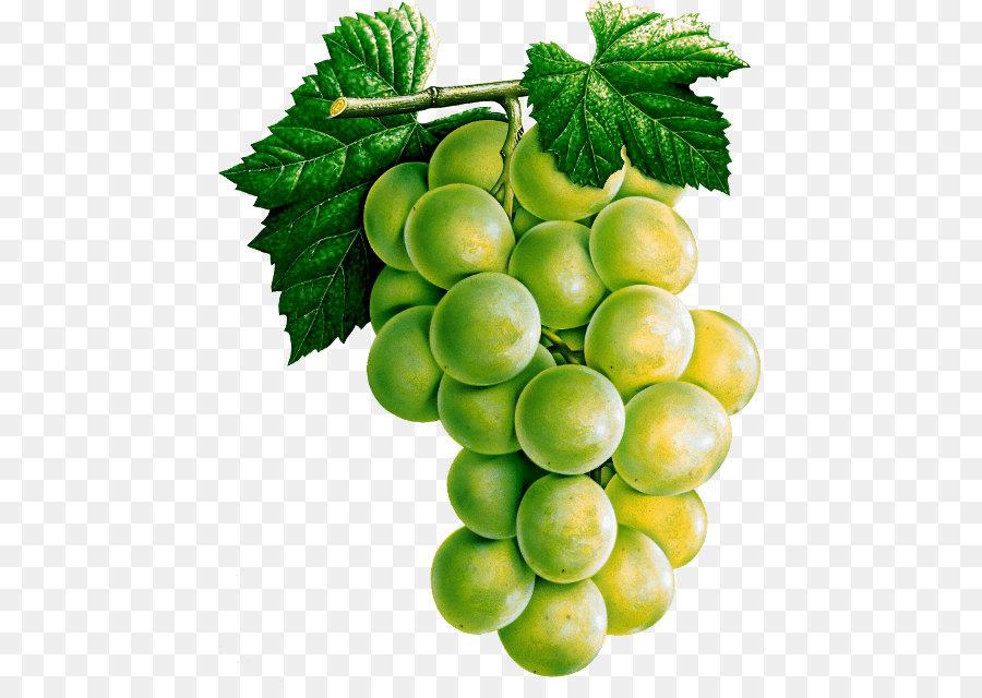Descarga gratuita de Vino Tinto, Pinot Noir, Vino Imágen de Png