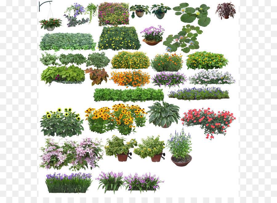 Descarga gratuita de árbol, Flor, Descargar imágenes PNG