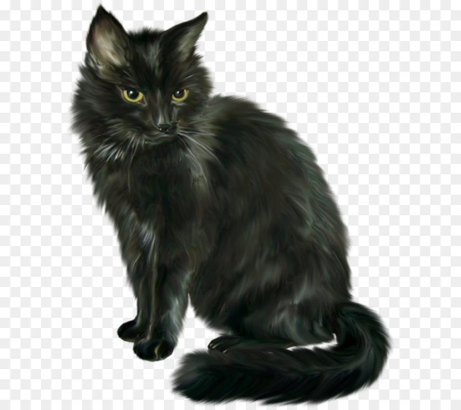 Descarga gratuita de Gatito, Animal, Descargar imágenes PNG