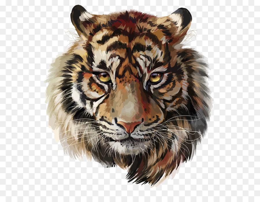 Descarga gratuita de Tigre, Pintura, Dibujo Imágen de Png