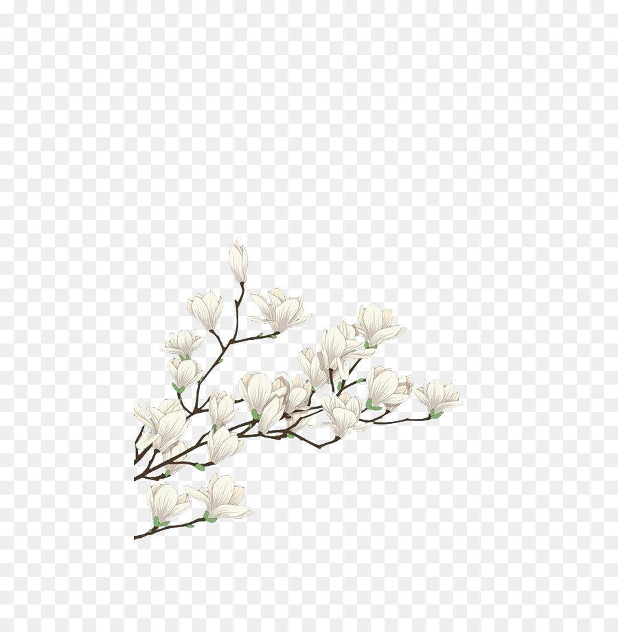 Descarga gratuita de Blanco, Flor, Floral Diseño Imágen de Png