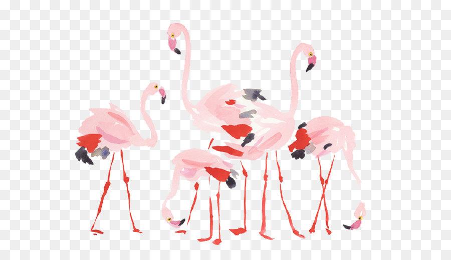Descarga gratuita de Aves, Flamingo, El Agua De Las Aves Imágen de Png