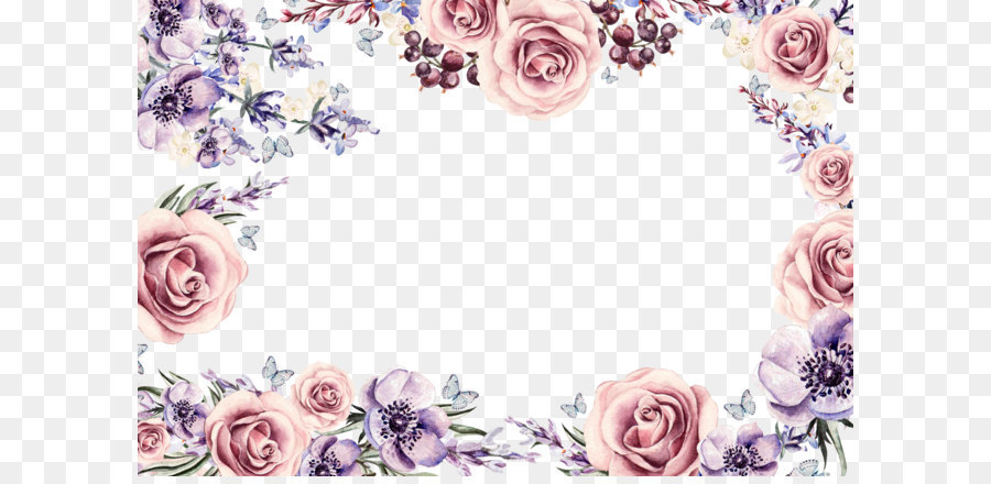 Descarga gratuita de Flor, Rosa, Color imágenes PNG