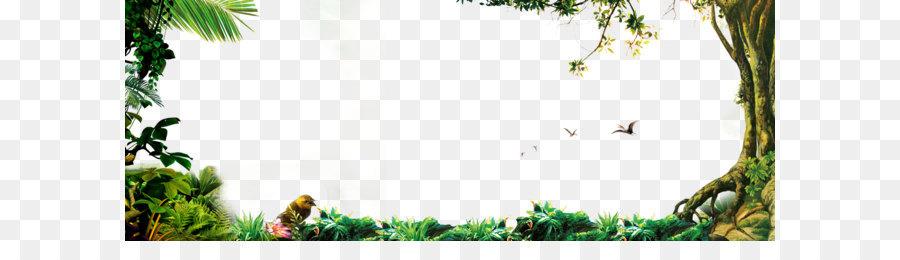 Descarga gratuita de árbol, Selva, Descargar imágenes PNG