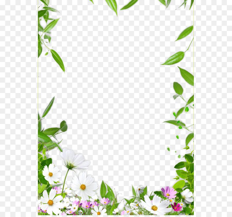 Descarga gratuita de Bordes Y Marcos, Flor, Floral Diseño imágenes PNG