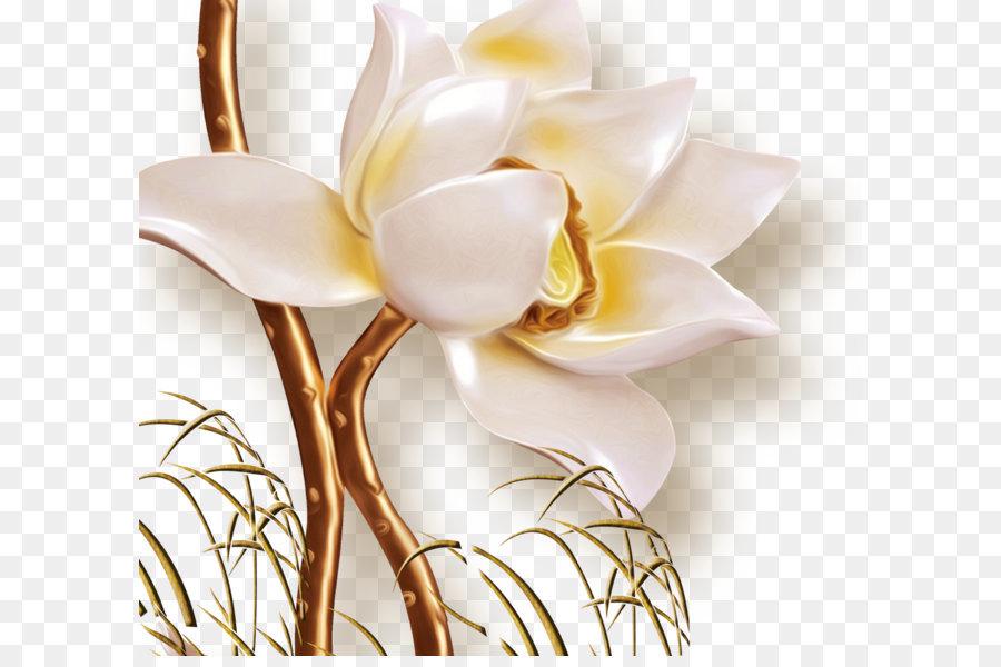 Descarga gratuita de Flor, Floral Diseño, La Televisión imágenes PNG
