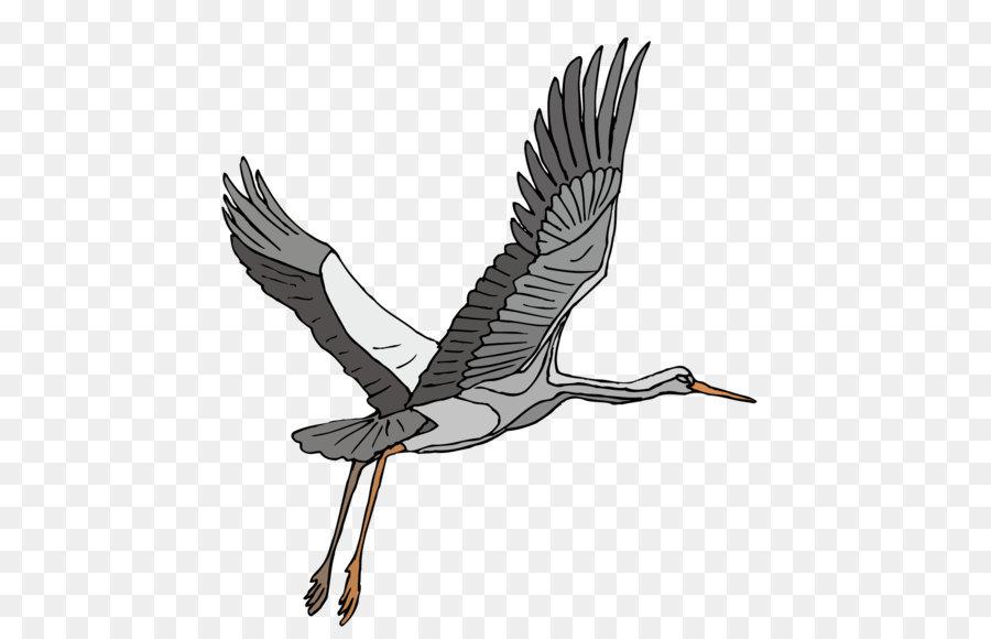Descarga gratuita de Grúa, Aves, Heron Imágen de Png