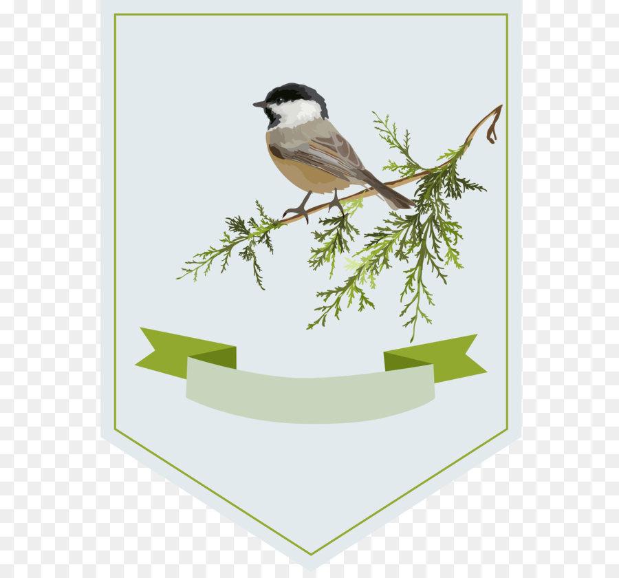 Descarga gratuita de Aves, Descargar imágenes PNG