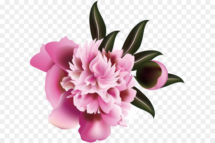 Descarga gratuita de Flor, Floral Diseño, Floristry Imágen de Png
