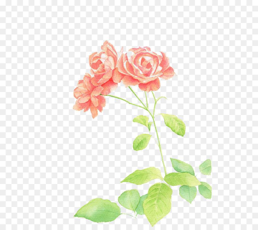 Descarga gratuita de Flor, Pintura, Floral Diseño Imágen de Png