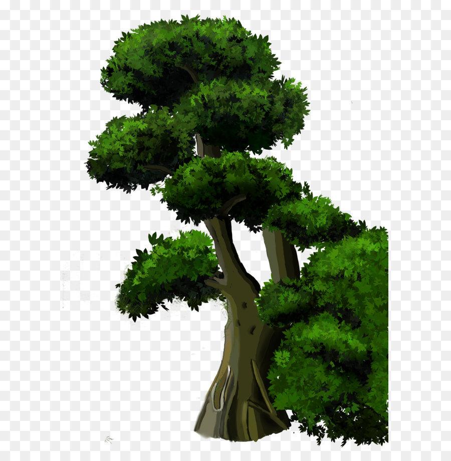 Descarga gratuita de árbol, Descargar, Planta imágenes PNG