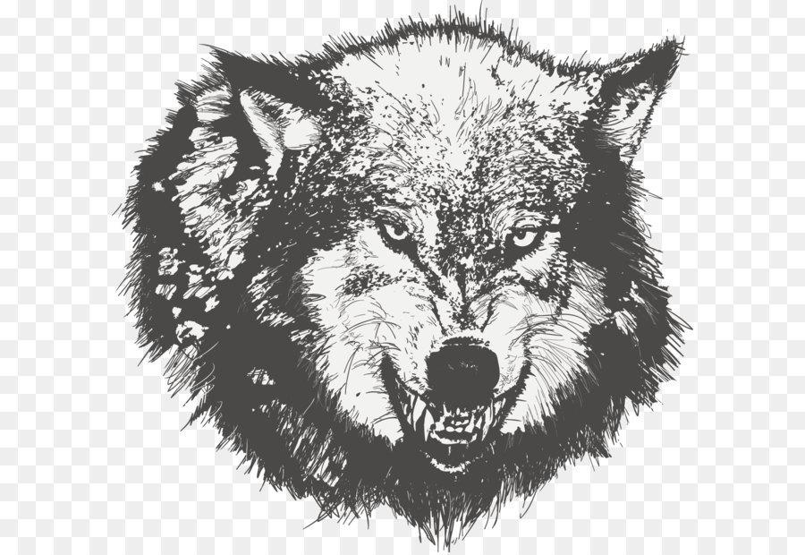 Descarga gratuita de Camiseta, Dibujo, Hombre Lobo Imágen de Png