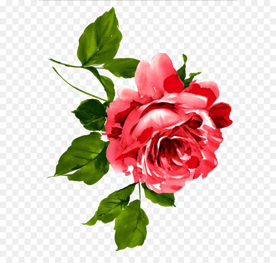 Descarga gratuita de China, Flor, Peonía Imágen de Png