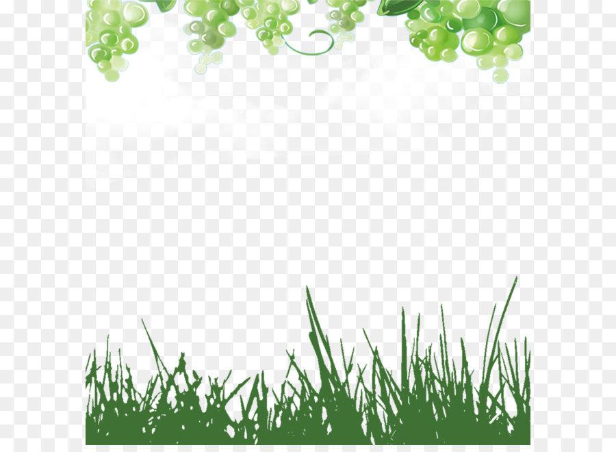 Descarga gratuita de Verde, Uva, La Fruta Imágen de Png