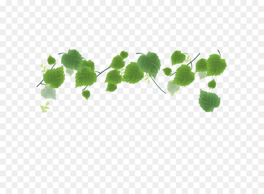 Descarga gratuita de Hoja, Verde, Planta imágenes PNG