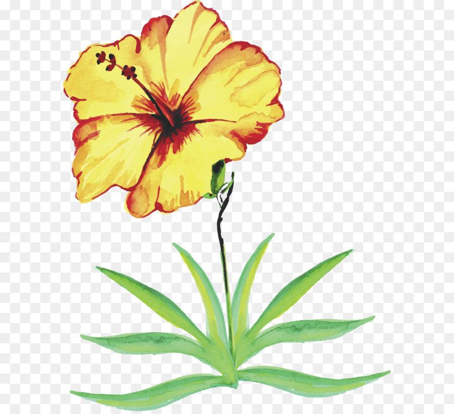 Descarga gratuita de Creativo Acuarela, Flor, Planta Imágen de Png