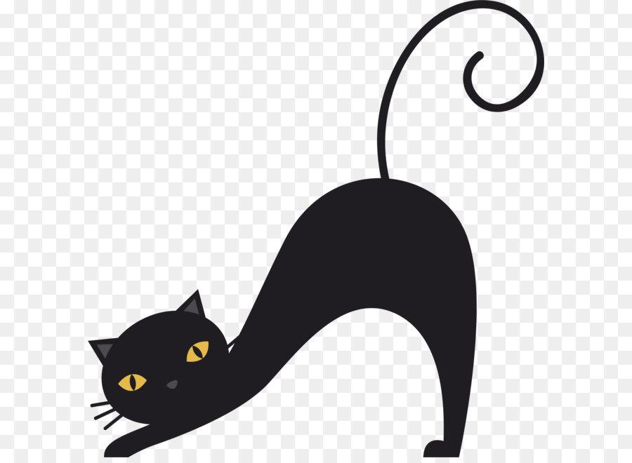 Descarga gratuita de Gato, Mascota, Bigotes imágenes PNG